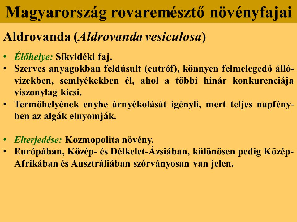 Aldrovanda (Aldrovanda vesiculosa) Élőhelye: Síkvidéki faj.