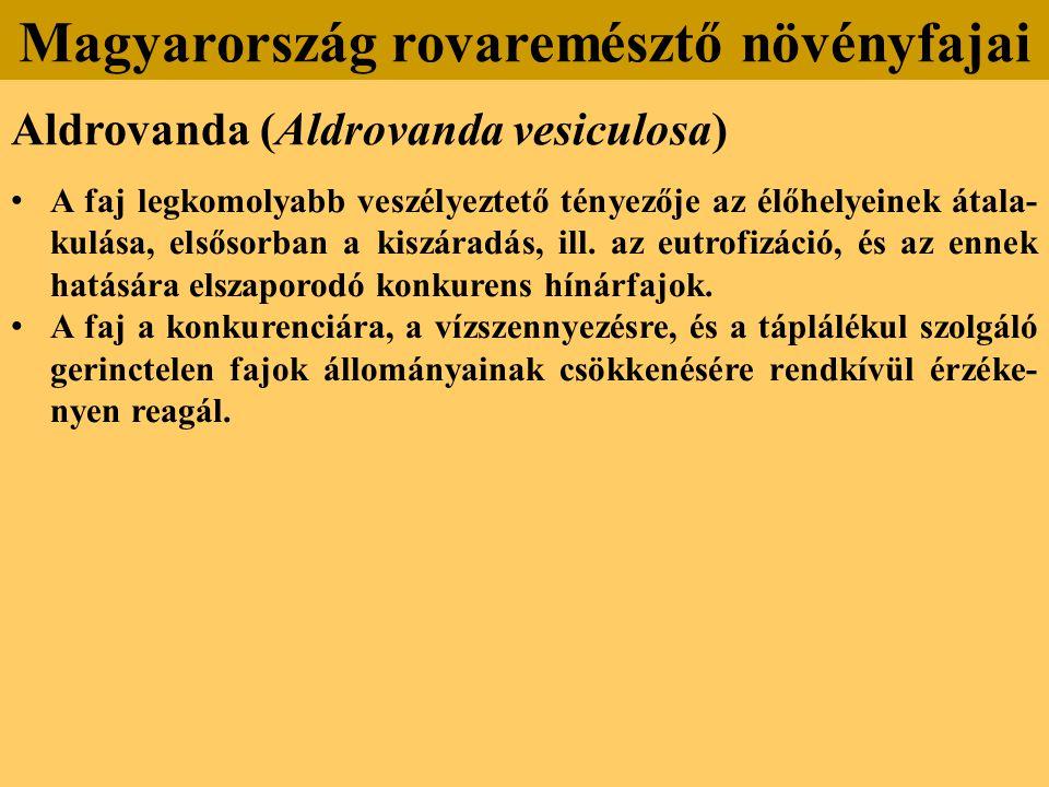 Aldrovanda (Aldrovanda vesiculosa) A faj legkomolyabb veszélyeztető tényezője az élőhelyeinek átala- kulása, elsősorban a kiszáradás, ill.