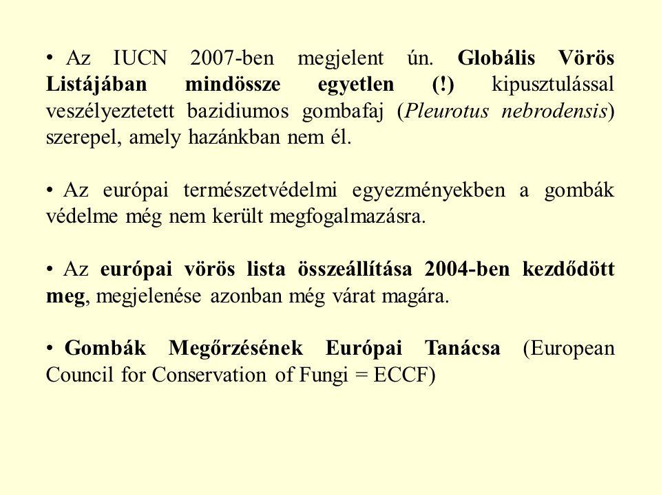 Az IUCN 2007-ben megjelent ún. Globális Vörös Listájában mindössze egyetlen (!) kipusztulással veszélyeztetett bazidiumos gombafaj (Pleurotus nebroden
