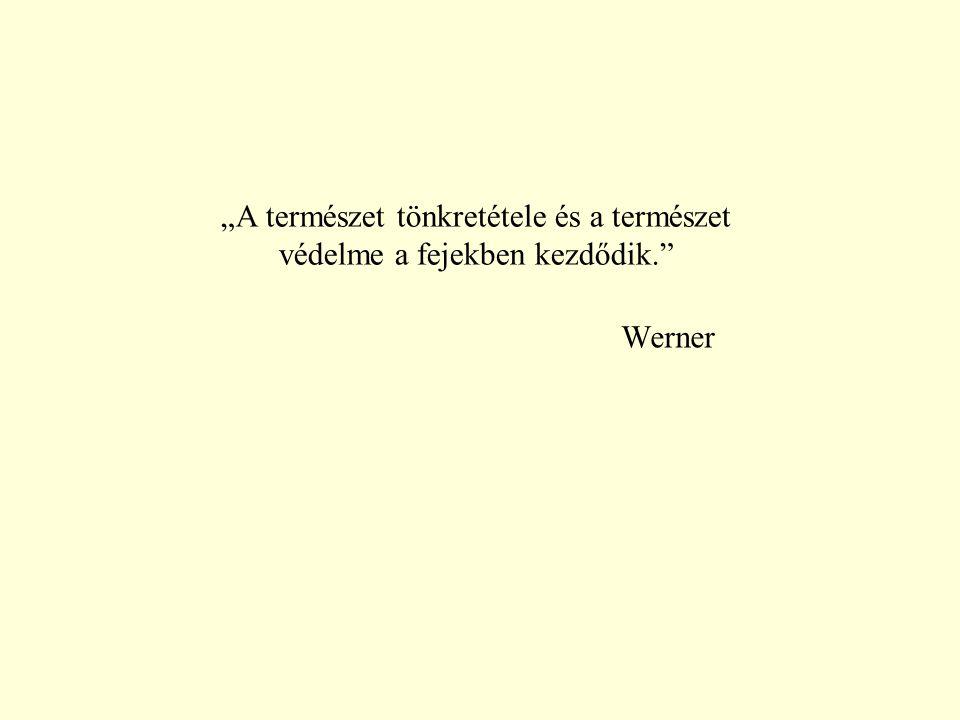 """""""A természet tönkretétele és a természet védelme a fejekben kezdődik."""" Werner"""