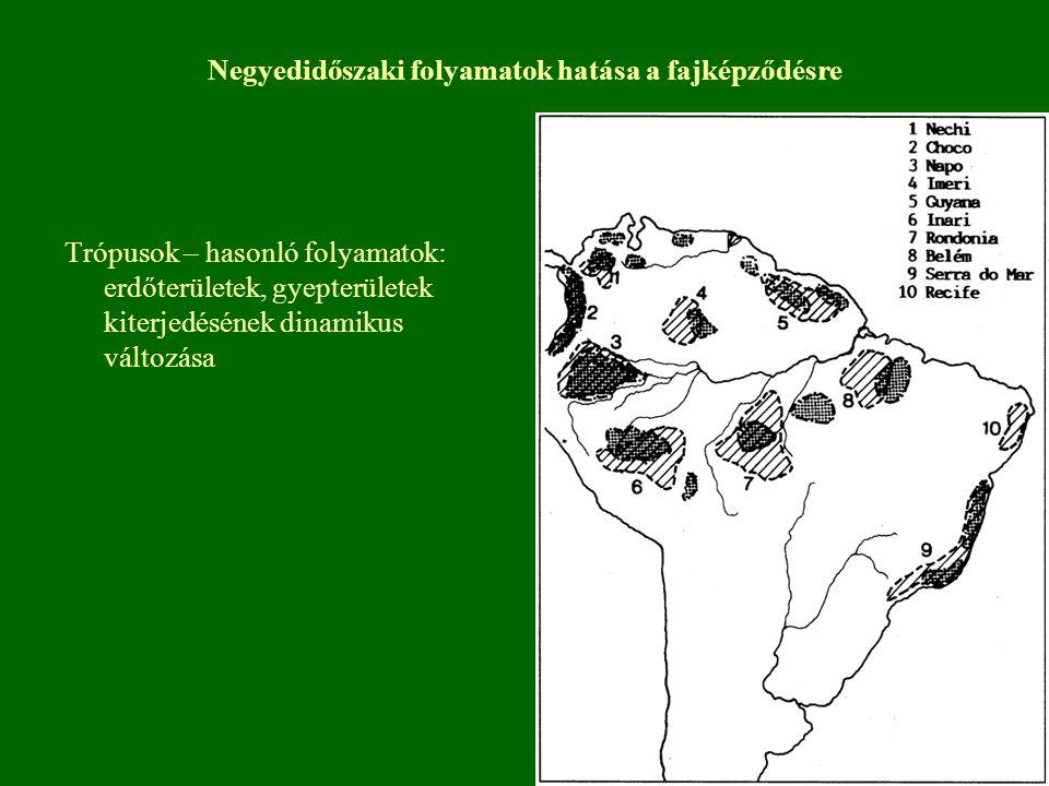 Trópusok – hasonló folyamatok: erdőterületek, gyepterületek kiterjedésének dinamikus változása Negyedidőszaki folyamatok hatása a fajképződésre