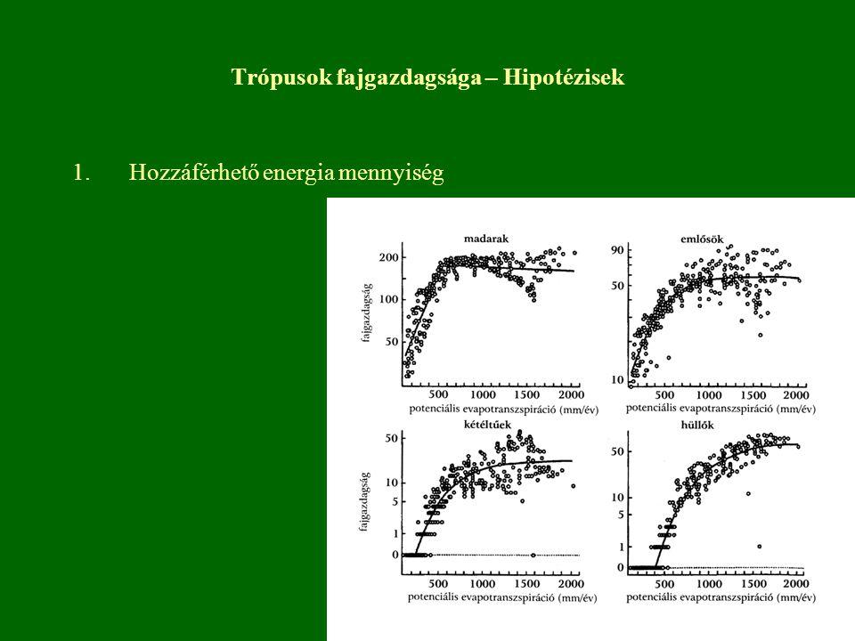 Trópusok fajgazdagsága – Hipotézisek 1.Hozzáférhető energia mennyiség