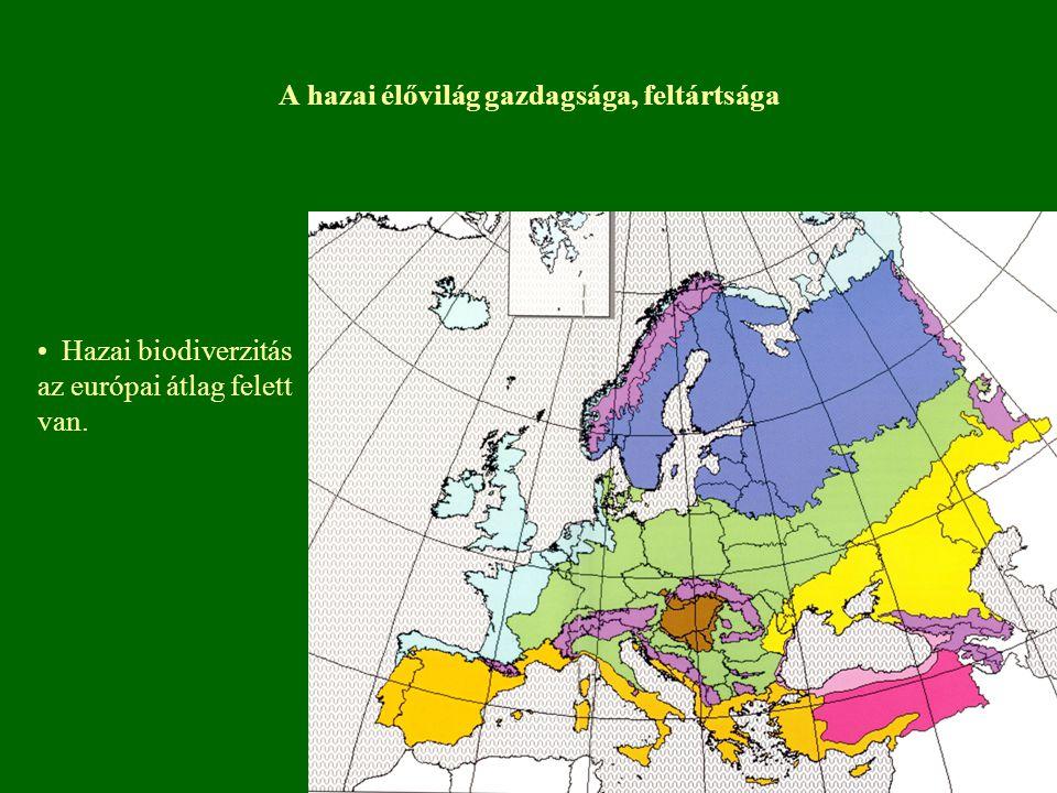 A hazai élővilág gazdagsága, feltártsága Hazai biodiverzitás az európai átlag felett van.