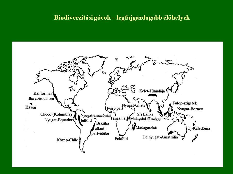Biodiverzitást befolyásoló tényezők 1.Tengerek – mélység csökken a diverzitás 2.Szárazföldek 2.1.