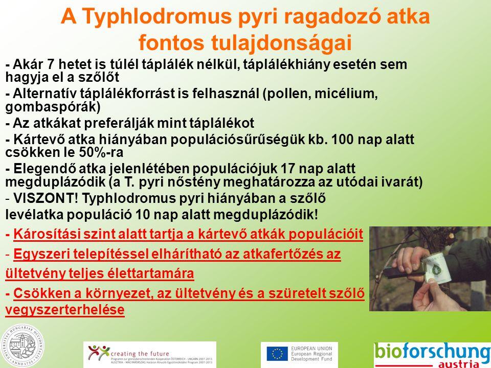 A Typhlodromus pyri ragadozó atka fontos tulajdonságai - Akár 7 hetet is túlél táplálék nélkül, táplálékhiány esetén sem hagyja el a szőlőt - Alternat