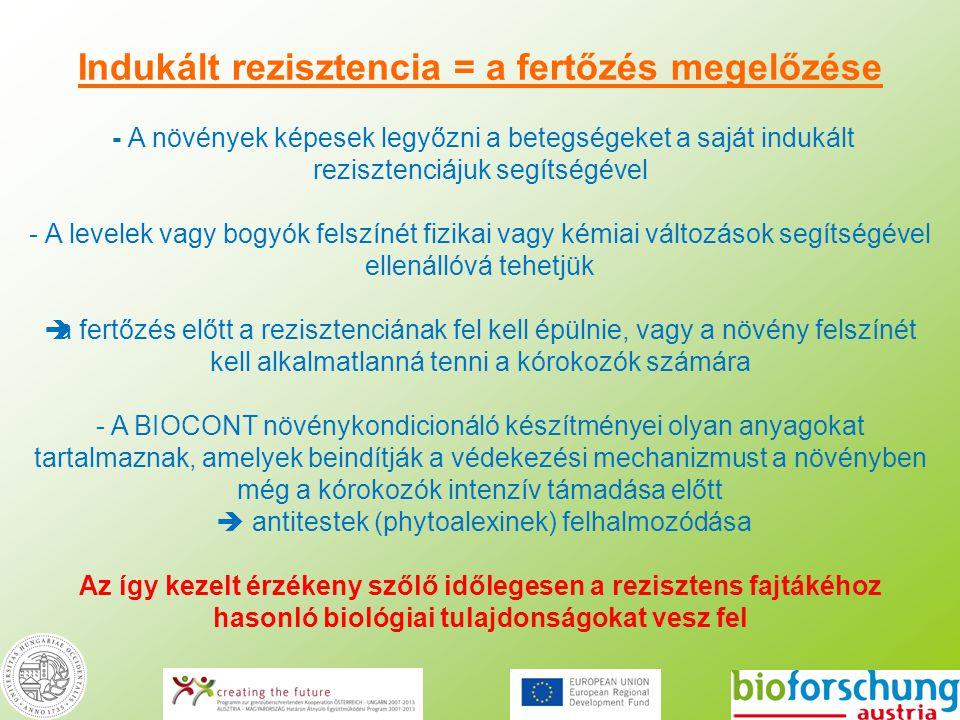 Indukált rezisztencia = a fertőzés megelőzése - A növények képesek legyőzni a betegségeket a saját indukált rezisztenciájuk segítségével - A levelek v