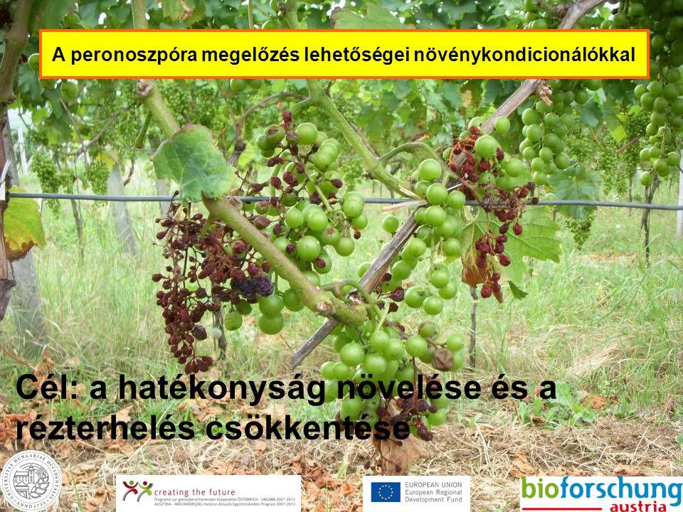 A peronoszpóra megelőzés lehetőségei növénykondicionálókkal Cél: a hatékonyság növelése és a rézterhelés csökkentése