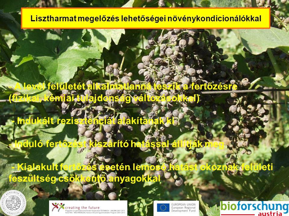 Lisztharmat megelőzés lehetőségei növénykondicionálókkal - A levél felületét alkalmatlanná teszik a fertőzésre (fizikai, kémiai tulajdonság változások