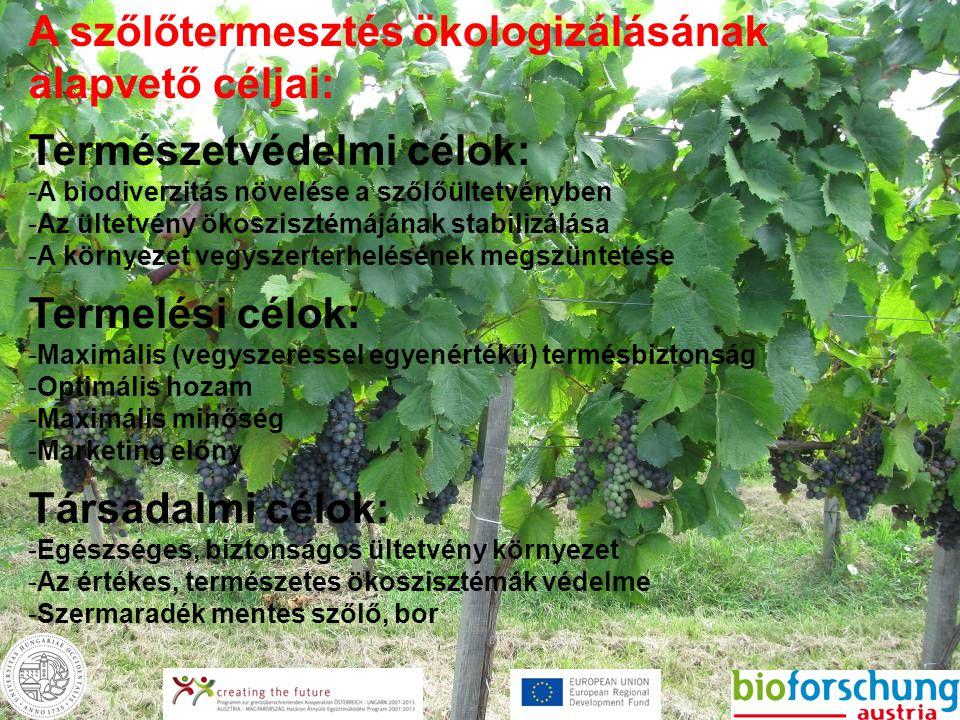 A szőlőtermesztés ökologizálásának alapvető céljai: Természetvédelmi célok: -A biodiverzitás növelése a szőlőültetvényben -Az ültetvény ökoszisztémájá