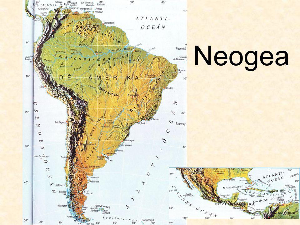 Neogea