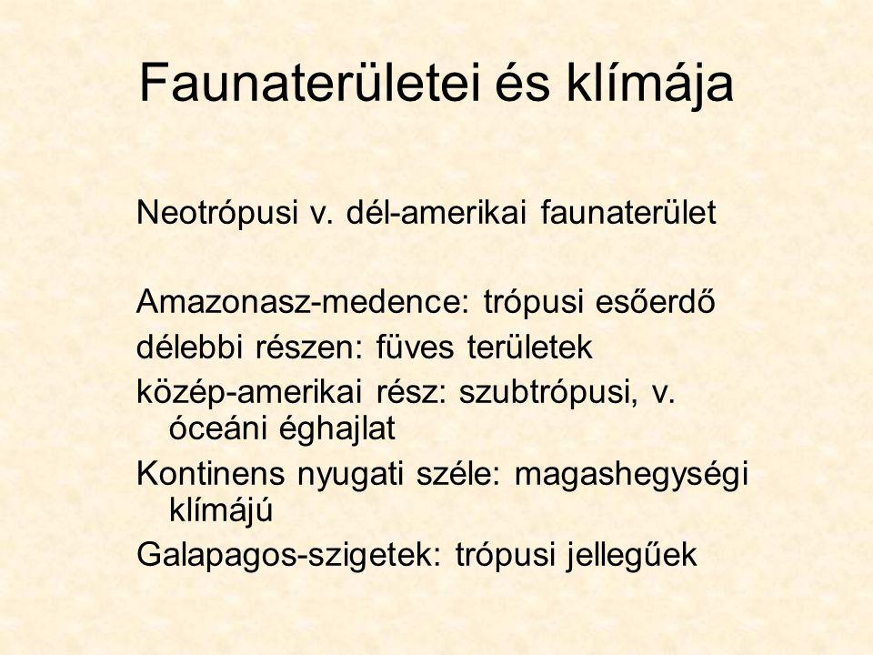 Faunaterületei és klímája Neotrópusi v.
