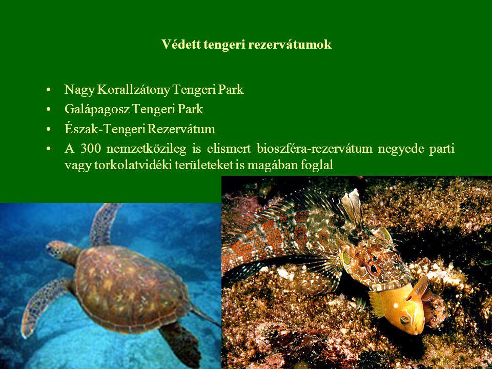 Védett tengeri rezervátumok Nagy Korallzátony Tengeri Park Galápagosz Tengeri Park Észak-Tengeri Rezervátum A 300 nemzetközileg is elismert bioszféra-