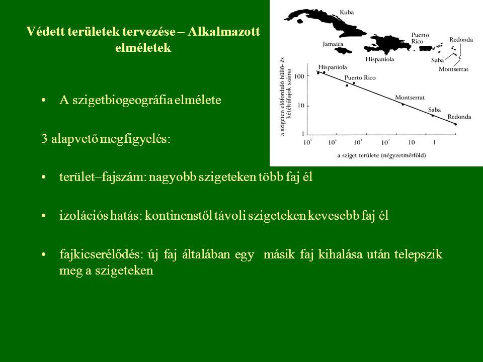 Védett területek tervezése – Alkalmazott elméletek A szigetbiogeográfia elmélete 3 alapvető megfigyelés: terület–fajszám: nagyobb szigeteken több faj