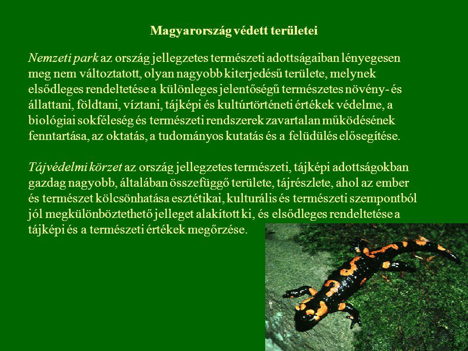 Magyarország védett területei Nemzeti park az ország jellegzetes természeti adottságaiban lényegesen meg nem változtatott, olyan nagyobb kiterjedésű t