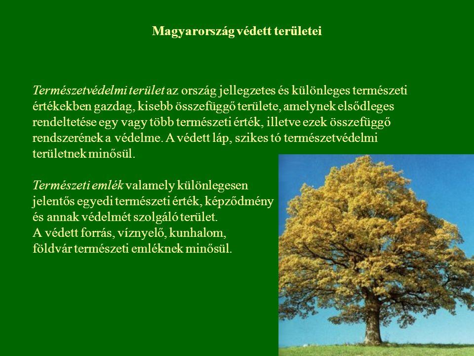 Magyarország védett területei Természetvédelmi terület az ország jellegzetes és különleges természeti értékekben gazdag, kisebb összefüggő területe, a