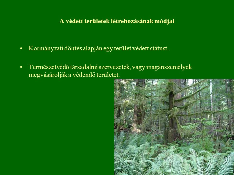 A védett területek létrehozásának módjai Kormányzati döntés alapján egy terület védett státust. Természetvédő társadalmi szervezetek, vagy magánszemél