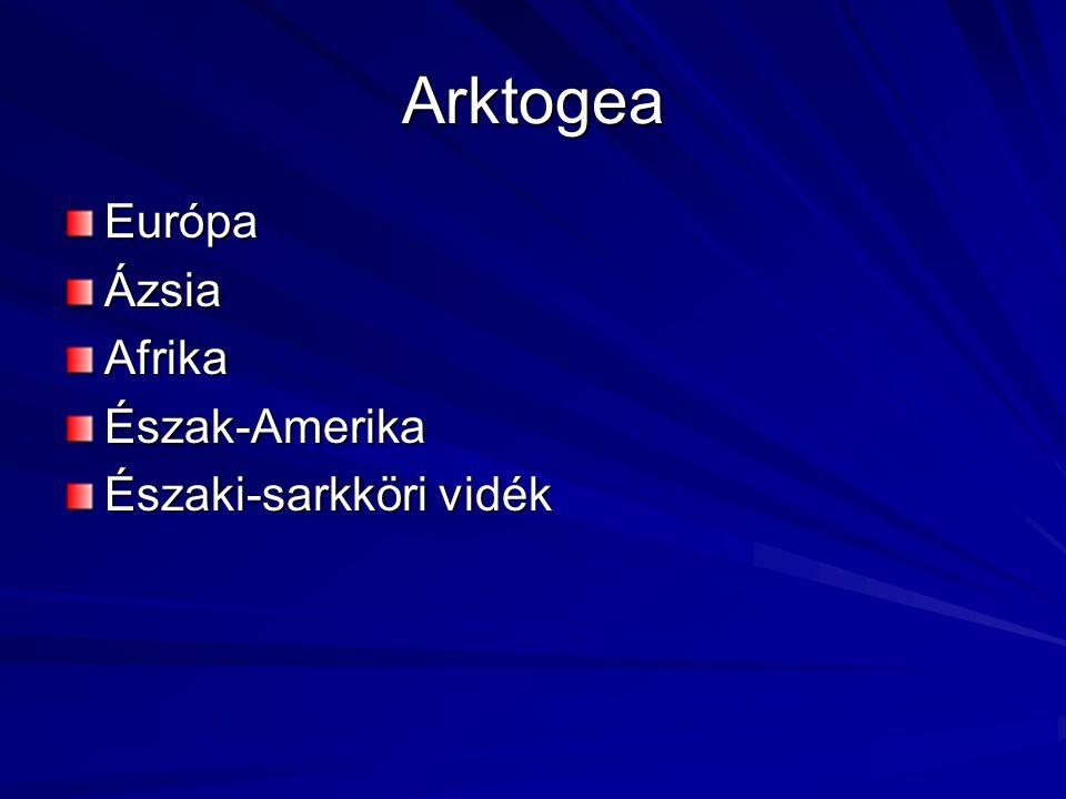Arktogea EurópaÁzsiaAfrikaÉszak-Amerika Északi-sarkköri vidék