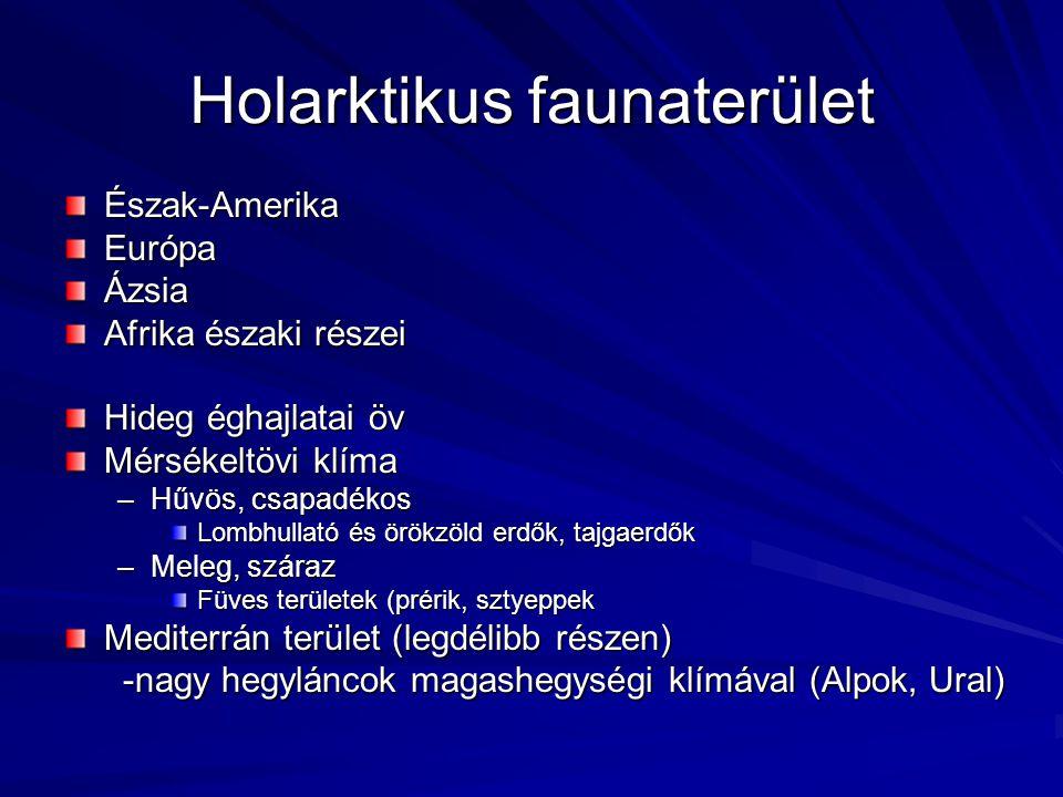Endemizmusok Rendek –Pusztai tyúkok (Pteroclinea) –Kecsegealakúak (Chondroganoidea) –Mozaikpáncélosok (Rhomboganoidea) –Ál-csontoshalak (Cycloganoidea)