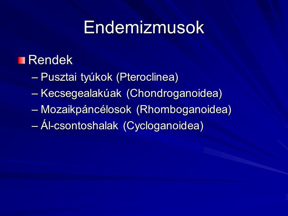 Endemizmusok Rendek –Pusztai tyúkok (Pteroclinea) –Kecsegealakúak (Chondroganoidea) –Mozaikpáncélosok (Rhomboganoidea) –Ál-csontoshalak (Cycloganoidea