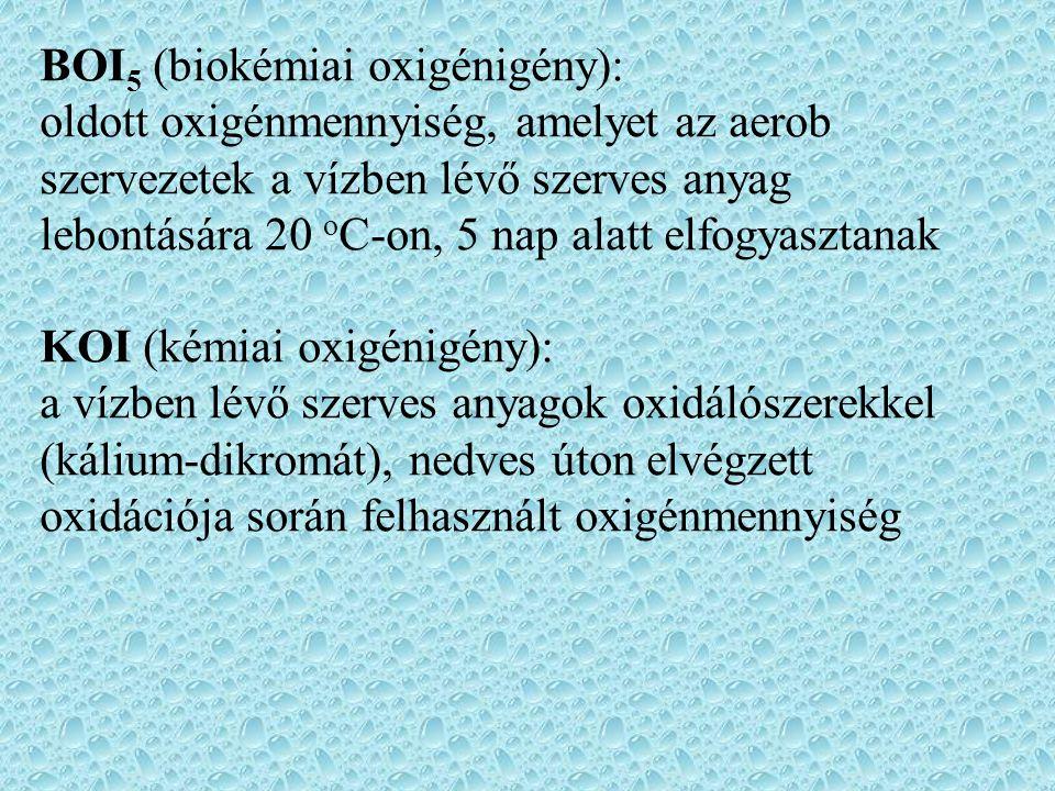 BOI 5 (biokémiai oxigénigény): oldott oxigénmennyiség, amelyet az aerob szervezetek a vízben lévő szerves anyag lebontására 20 o C-on, 5 nap alatt elfogyasztanak KOI (kémiai oxigénigény): a vízben lévő szerves anyagok oxidálószerekkel (kálium-dikromát), nedves úton elvégzett oxidációja során felhasznált oxigénmennyiség