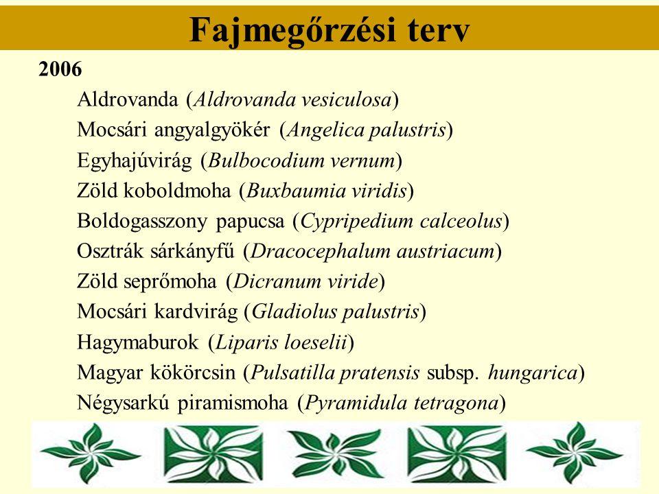 Fajmegőrzési terv 2006 Aldrovanda (Aldrovanda vesiculosa) Mocsári angyalgyökér (Angelica palustris) Egyhajúvirág (Bulbocodium vernum) Zöld koboldmoha