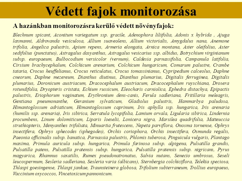 Védett fajok monitorozása A hazánkban monitorozásra kerülő védett növényfajok: Blechnum spicant, Aconitum variegatum ssp. gracile, Adenophora liliifol