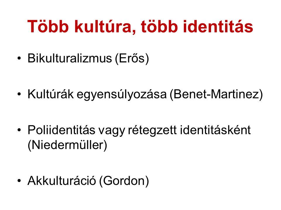 Több kultúra, több identitás Bikulturalizmus (Erős) Kultúrák egyensúlyozása (Benet-Martinez) Poliidentitás vagy rétegzett identitásként (Niedermüller) Akkulturáció (Gordon)