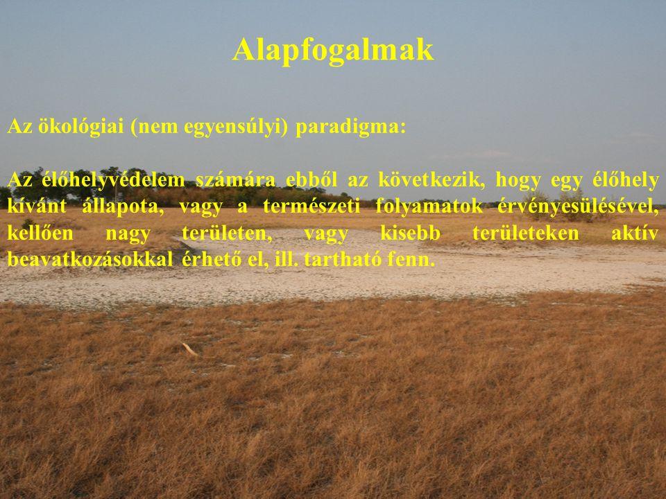 Alapfogalmak Az ökológiai (nem egyensúlyi) paradigma: Az élőhelyvédelem számára ebből az következik, hogy egy élőhely kívánt állapota, vagy a természeti folyamatok érvényesülésével, kellően nagy területen, vagy kisebb területeken aktív beavatkozásokkal érhető el, ill.