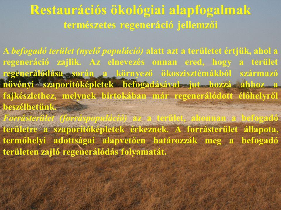 Restaurációs ökológiai alapfogalmak természetes regeneráció jellemzői A befogadó terület (nyelő populáció) alatt azt a területet értjük, ahol a regene