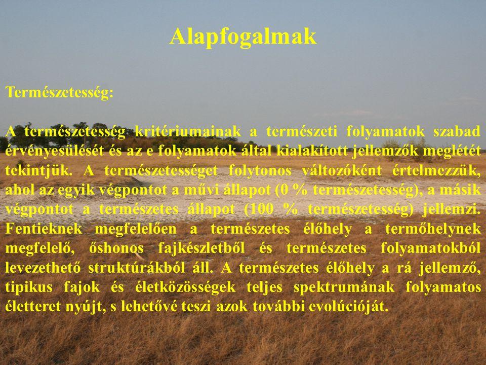 Alapfogalmak Természetesség: A természetesség kritériumainak a természeti folyamatok szabad érvényesülését és az e folyamatok által kialakított jellem