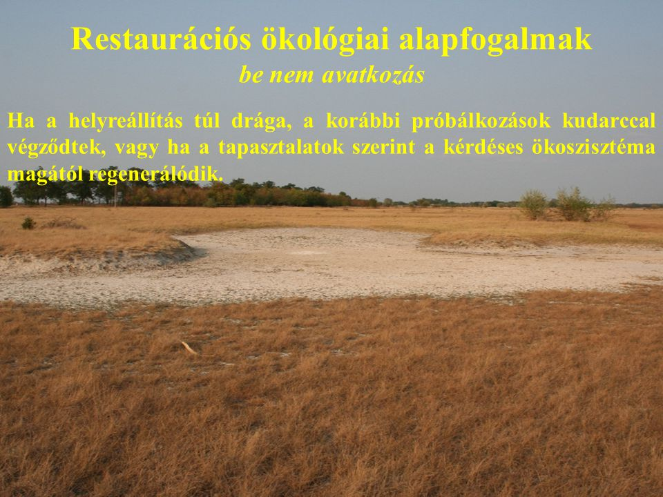 Restaurációs ökológiai alapfogalmak be nem avatkozás Ha a helyreállítás túl drága, a korábbi próbálkozások kudarccal végződtek, vagy ha a tapasztalatok szerint a kérdéses ökoszisztéma magától regenerálódik.