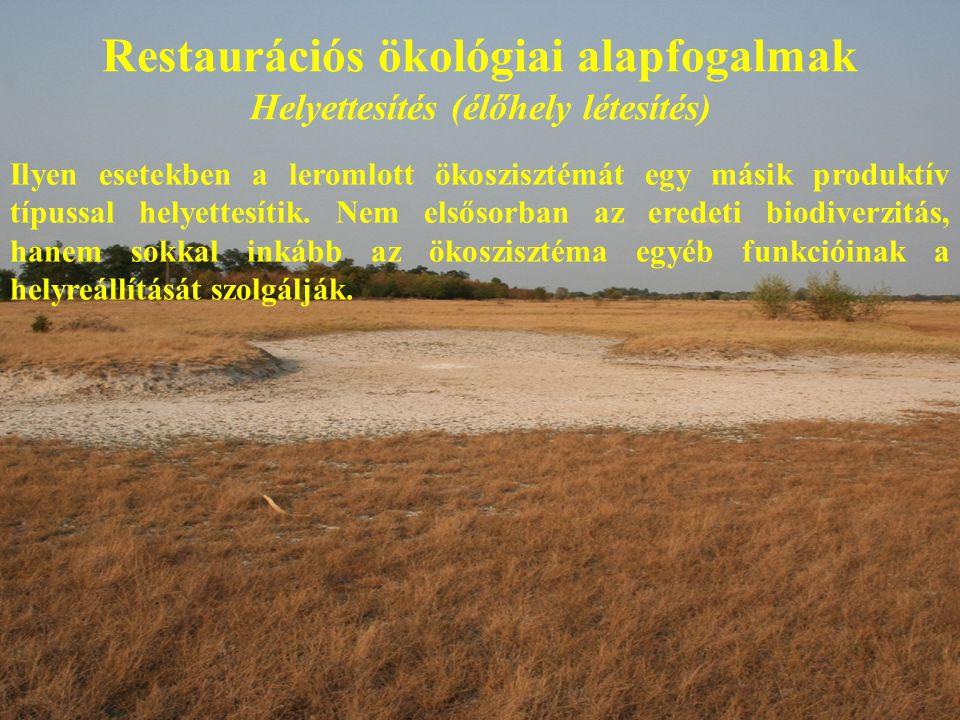 Restaurációs ökológiai alapfogalmak Helyettesítés (élőhely létesítés) Ilyen esetekben a leromlott ökoszisztémát egy másik produktív típussal helyettesítik.