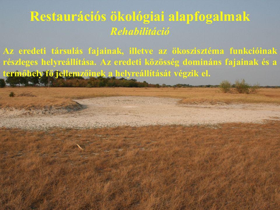 Restaurációs ökológiai alapfogalmak Rehabilitáció Az eredeti társulás fajainak, illetve az ökoszisztéma funkcióinak részleges helyreállítása. Az erede