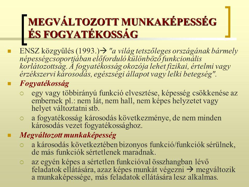 MEGVÁLTOZOTT MUNKAKÉPESSÉG ÉS FOGYATÉKOSSÁG ENSZ közgyűlés (1993.) 