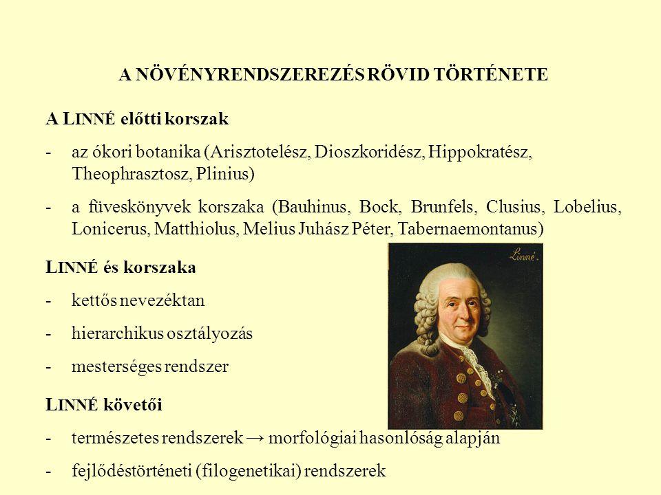 A NÖVÉNYRENDSZEREZÉS RÖVID TÖRTÉNETE A L INNÉ előtti korszak -az ókori botanika (Arisztotelész, Dioszkoridész, Hippokratész, Theophrasztosz, Plinius) -a füveskönyvek korszaka (Bauhinus, Bock, Brunfels, Clusius, Lobelius, Lonicerus, Matthiolus, Melius Juhász Péter, Tabernaemontanus) L INNÉ és korszaka -kettős nevezéktan -hierarchikus osztályozás -mesterséges rendszer L INNÉ követői -természetes rendszerek → morfológiai hasonlóság alapján -fejlődéstörténeti (filogenetikai) rendszerek