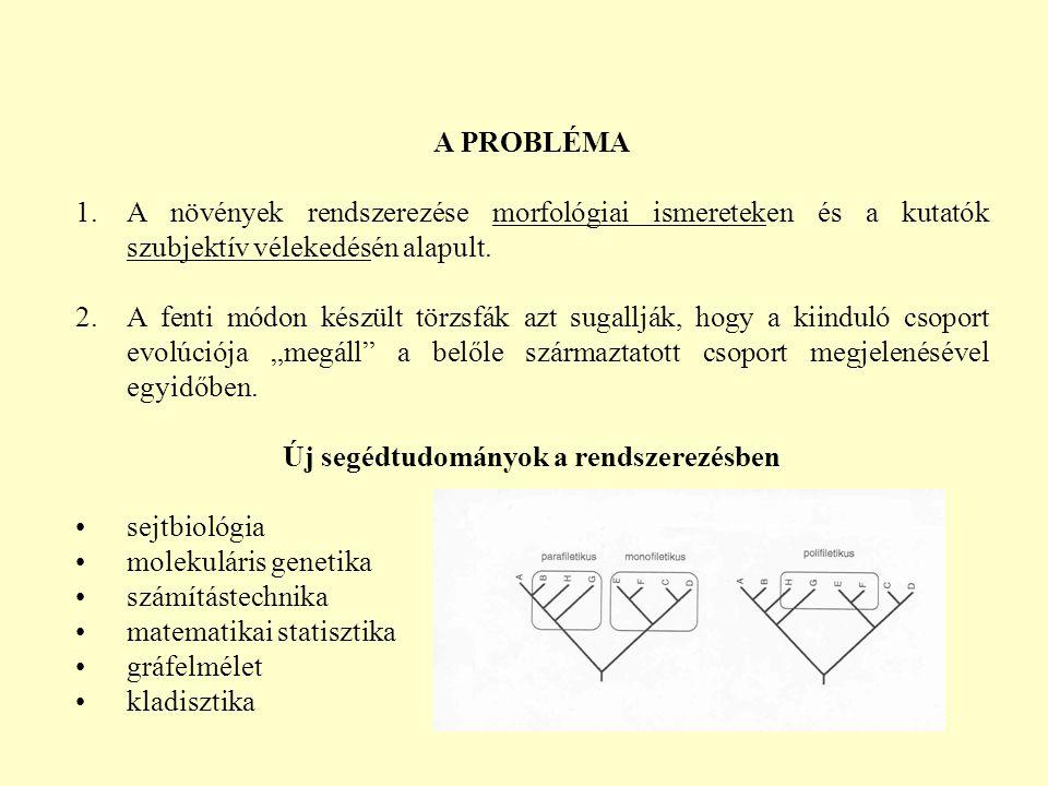 A PROBLÉMA 1.A növények rendszerezése morfológiai ismereteken és a kutatók szubjektív vélekedésén alapult.