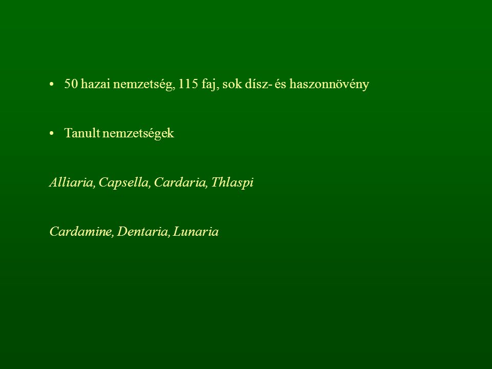 50 hazai nemzetség, 115 faj, sok dísz- és haszonnövény Tanult nemzetségek Alliaria, Capsella, Cardaria, Thlaspi Cardamine, Dentaria, Lunaria