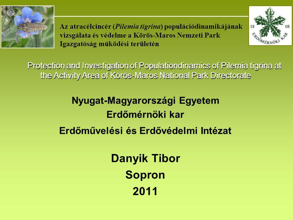 _______________________________________ Az atracélcincér (Pilemia tigrina) populációdinamikájának vizsgálata és védelme a Körös-Maros Nemzeti Park Igazgatóság működési területén Protection and Investigation of Populationdinamics of Pilemia tigrina at the Activity Area of Körös-Maros National Park Directorate Protection and Investigation of Populationdinamics of Pilemia tigrina at the Activity Area of Körös-Maros National Park Directorate Nyugat-Magyarországi Egyetem Erdőmérnöki kar Erdőművelési és Erdővédelmi Intézat Danyik Tibor Sopron 2011