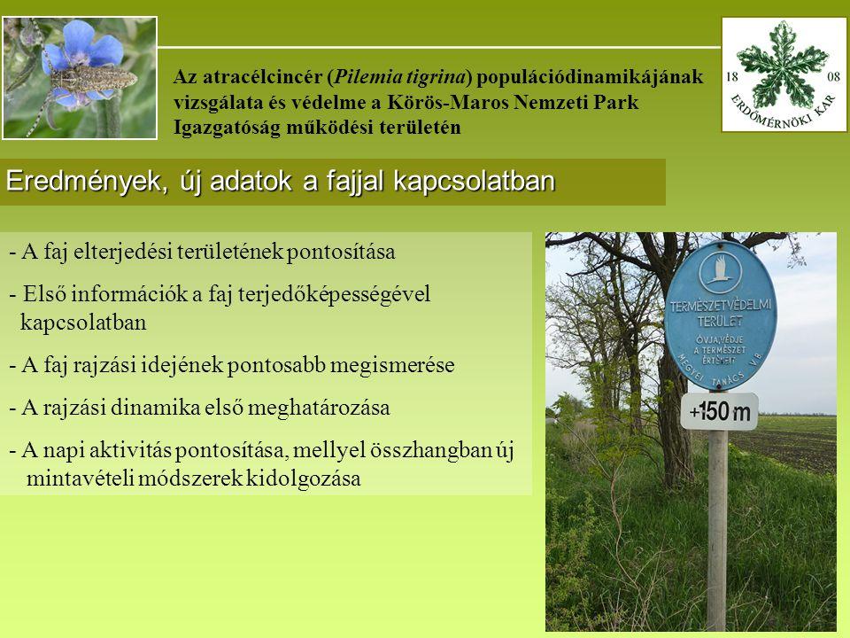 _______________________________________ Az atracélcincér (Pilemia tigrina) populációdinamikájának vizsgálata és védelme a Körös-Maros Nemzeti Park Igazgatóság működési területén Eredmények, új adatok a fajjal kapcsolatban - A faj elterjedési területének pontosítása - Első információk a faj terjedőképességével kapcsolatban - A faj rajzási idejének pontosabb megismerése - A rajzási dinamika első meghatározása - A napi aktivitás pontosítása, mellyel összhangban új mintavételi módszerek kidolgozása