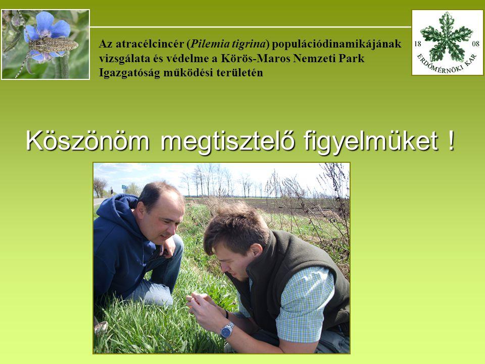 _______________________________________ Az atracélcincér (Pilemia tigrina) populációdinamikájának vizsgálata és védelme a Körös-Maros Nemzeti Park Igazgatóság működési területén Köszönöm megtisztelő figyelmüket !