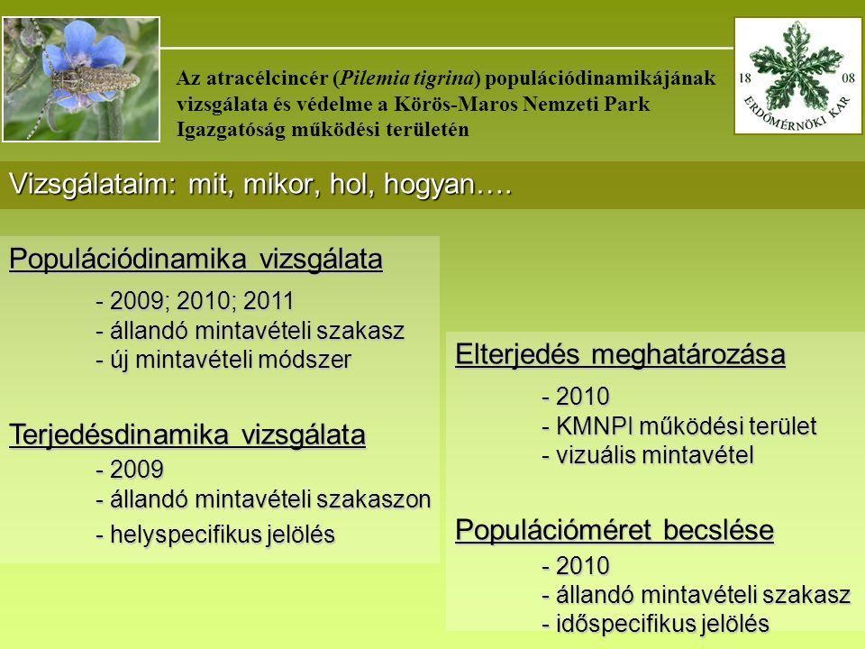 _______________________________________ Az atracélcincér (Pilemia tigrina) populációdinamikájának vizsgálata és védelme a Körös-Maros Nemzeti Park Igazgatóság működési területén Vizsgálataim: mit, mikor, hol, hogyan….