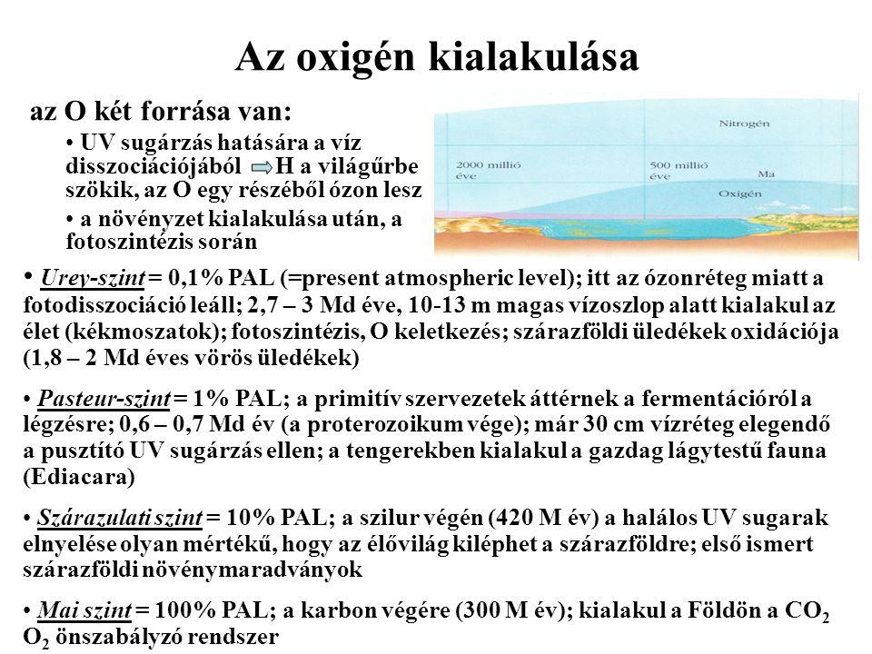 Az oxigén kialakulása az O két forrása van: UV sugárzás hatására a víz disszociációjából H a világűrbe szökik, az O egy részéből ózon lesz a növényzet