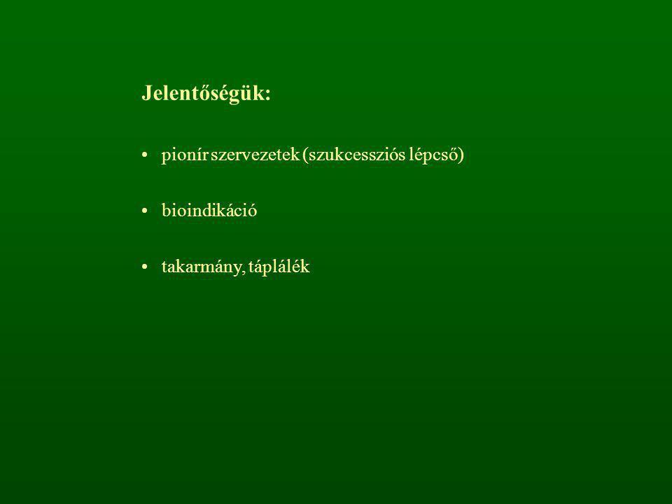 Jelentőségük: pionír szervezetek (szukcessziós lépcső) bioindikáció takarmány, táplálék