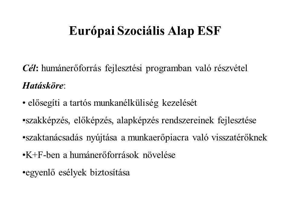 Európai Szociális Alap ESF Cél: humánerőforrás fejlesztési programban való részvétel Hatásköre: elősegíti a tartós munkanélküliség kezelését szakképzé