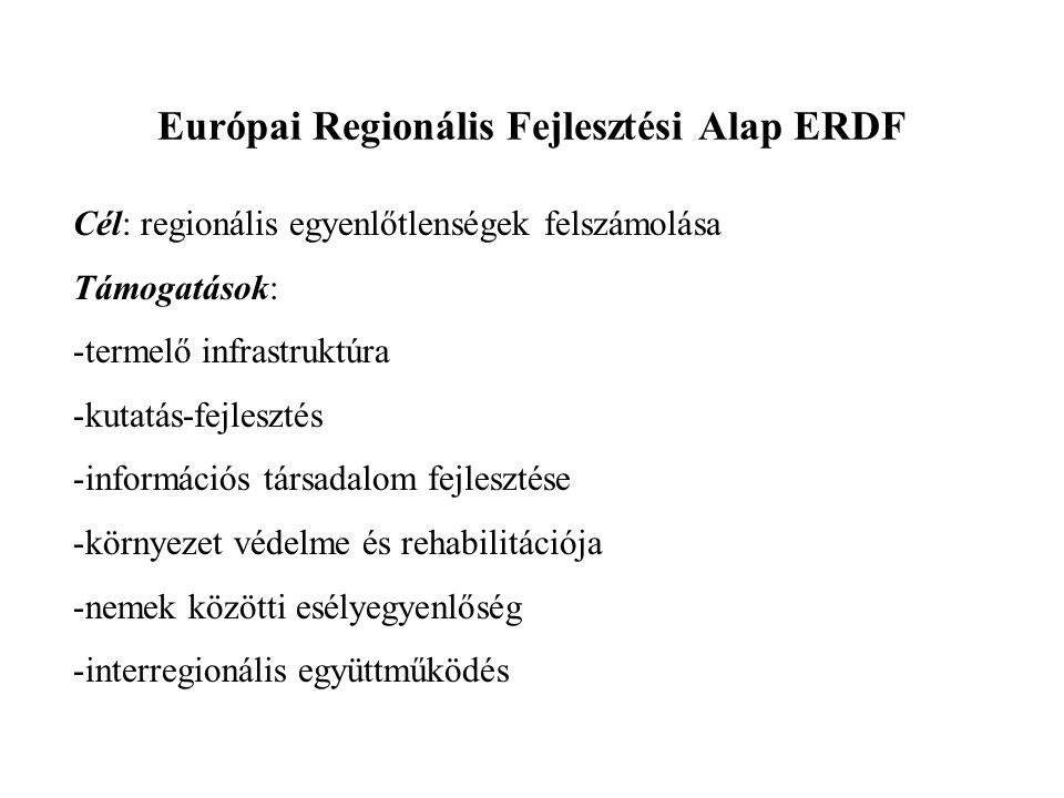 Európai Regionális Fejlesztési Alap ERDF Cél: regionális egyenlőtlenségek felszámolása Támogatások: -termelő infrastruktúra -kutatás-fejlesztés -infor