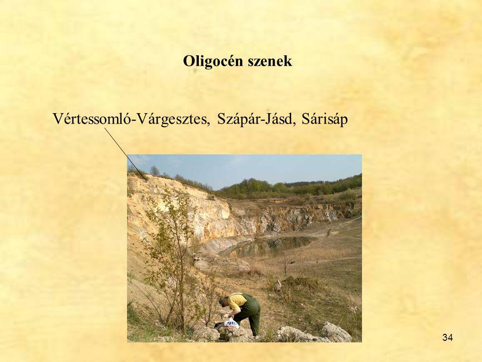 34 Oligocén szenek Vértessomló-Várgesztes, Szápár-Jásd, Sárisáp