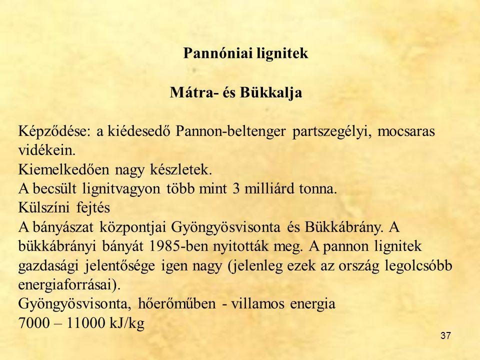 37 Pannóniai lignitek Mátra- és Bükkalja Képződése: a kiédesedő Pannon-beltenger partszegélyi, mocsaras vidékein. Kiemelkedően nagy készletek. A becsü
