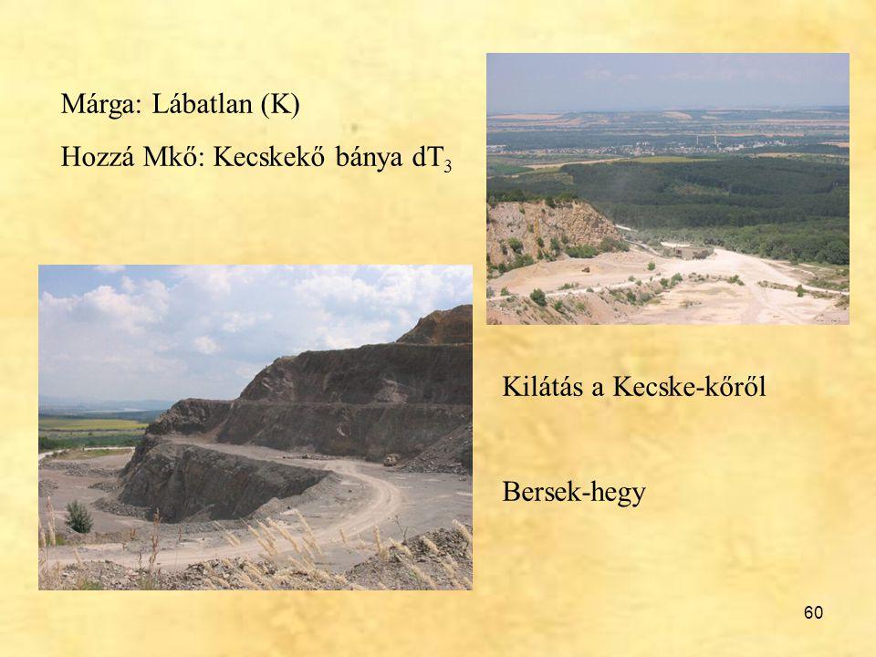 60 Márga: Lábatlan (K) Hozzá Mkő: Kecskekő bánya dT 3 Kilátás a Kecske-kőről Bersek-hegy