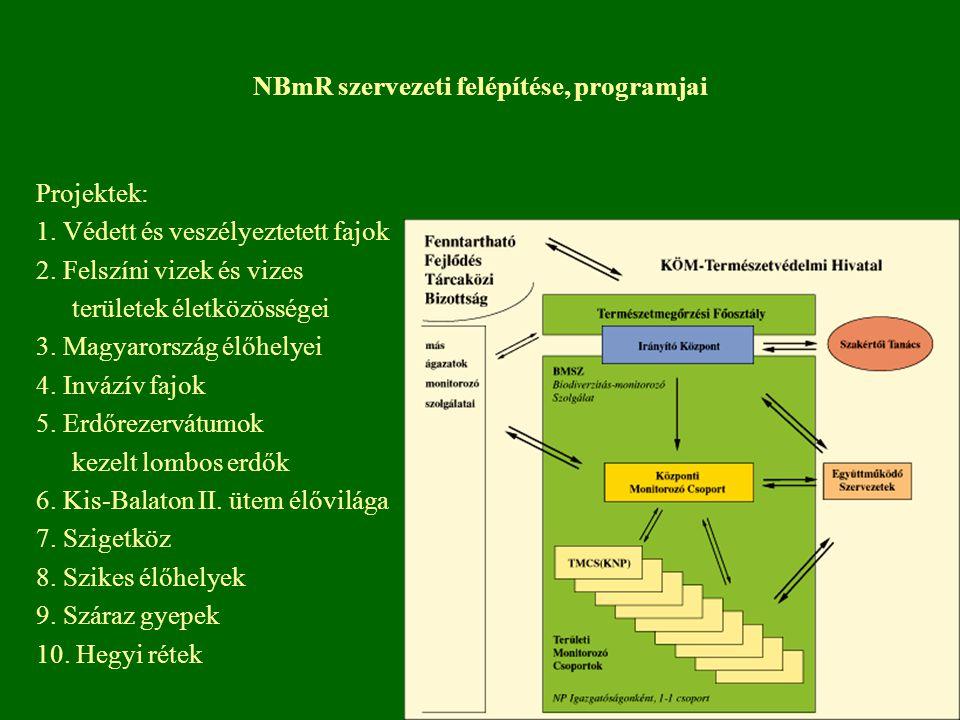 NBmR szervezeti felépítése, programjai Projektek: 1. Védett és veszélyeztetett fajok 2. Felszíni vizek és vizes területek életközösségei 3. Magyarorsz