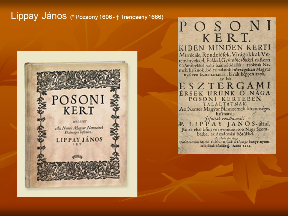 Pápai Páriz Ferenc (* Dés 1649 - † Nagyenyed 1716) Református lelkész, orvos, tanár, író, botanikus